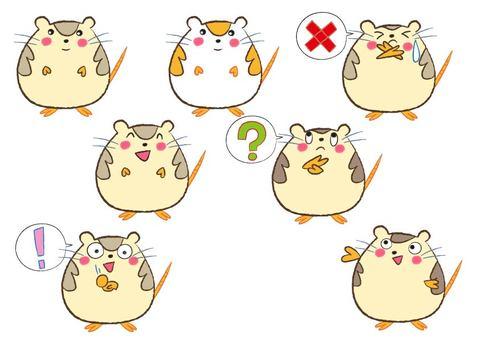 Hamster Various facial expressions