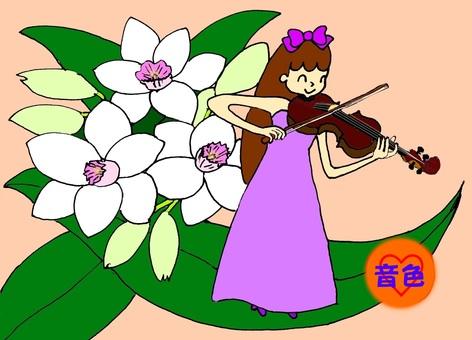 가을의 바이올린