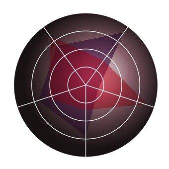 Radar Chart 5