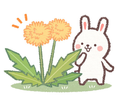Dandelion and rabbit