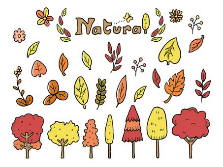Natural materials_Autumn