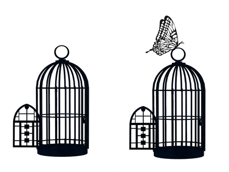 Butterfly and cage 2