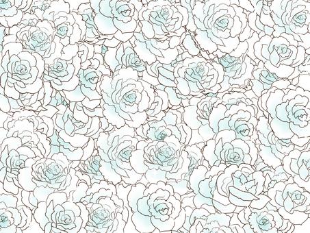 埋在少女白玫瑰中