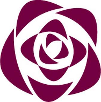 Rose cross section illustration