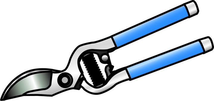 Gold cutting scissors