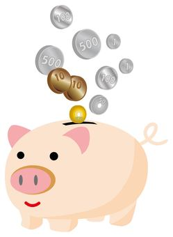 Pig piggy bank and coin