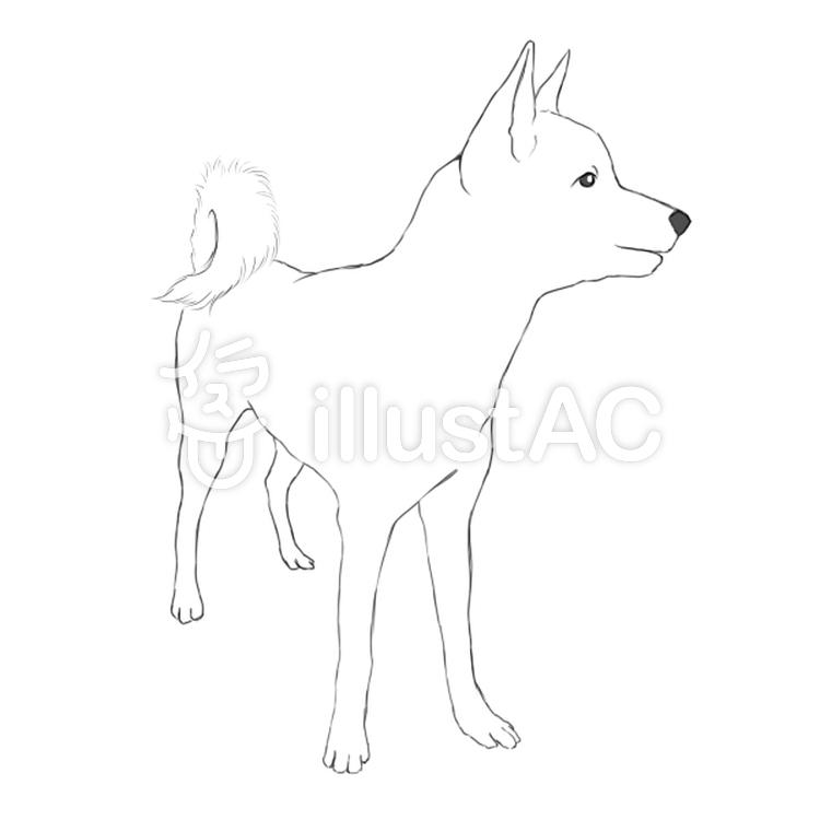 日本犬のイラストイラスト No 905869無料イラストならイラストac