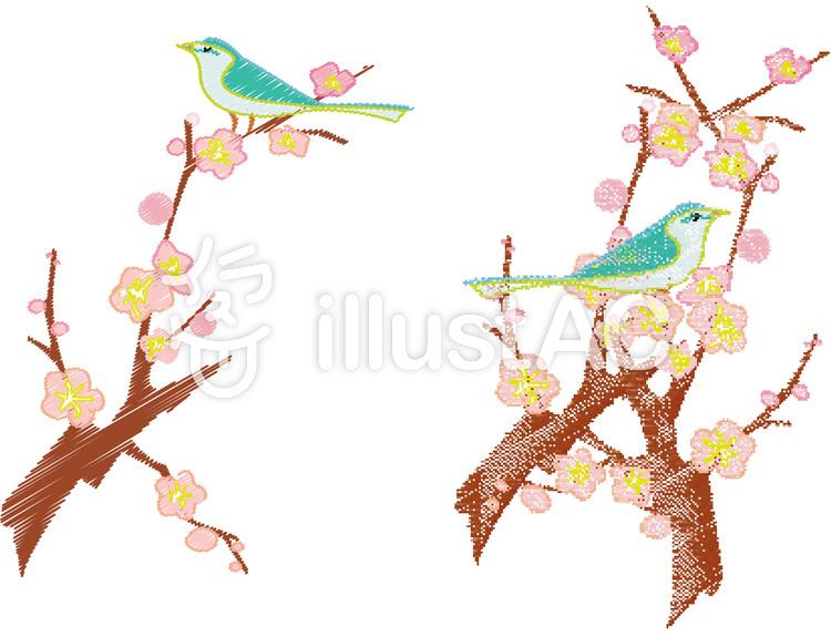 イラスト梅鴬春冬花飾り筆和風和柄2月3月イラスト No 325621無料