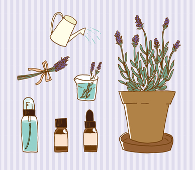 Potted lavender aroma illustration