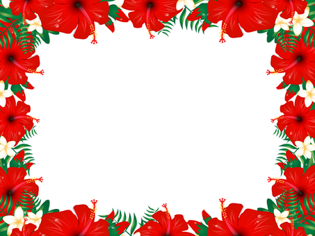 Hibiscus background 4