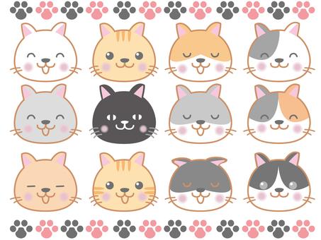 Cat's face 2