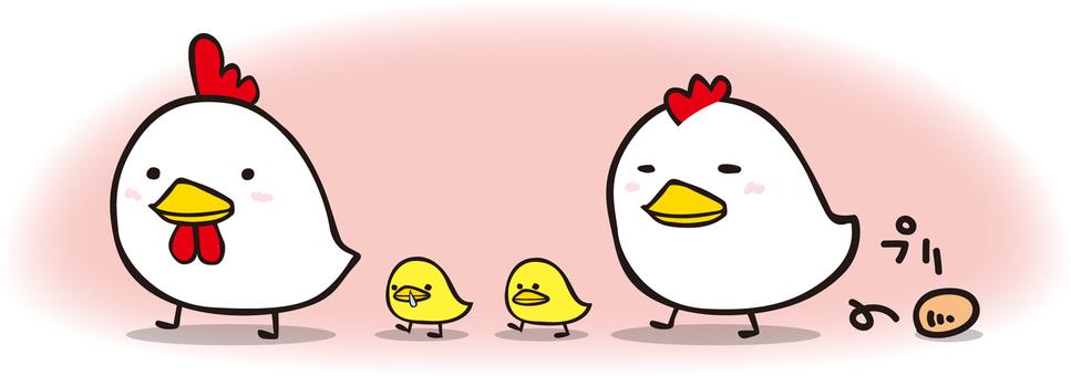 Chickens 01