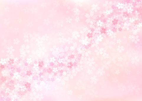 벚꽃 422