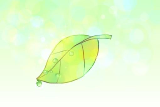 Drop of leaves