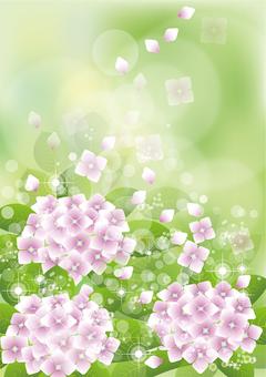 Green & hydrangea 29