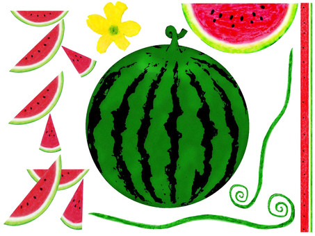 Vertical Letter B of Watermelon