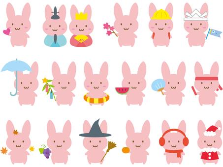 Rabbit season icon set