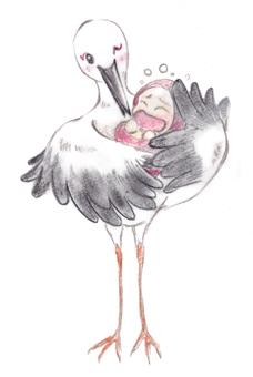 행복 택배 황새 1