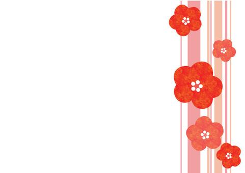 A warm plum flower - striped