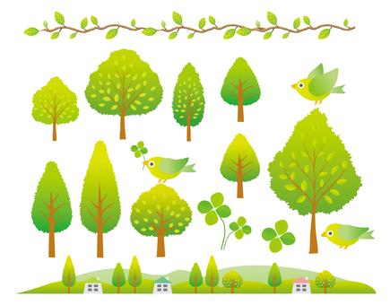 푸른 나무 여러가지