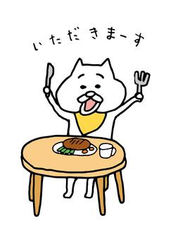 고양이들 14
