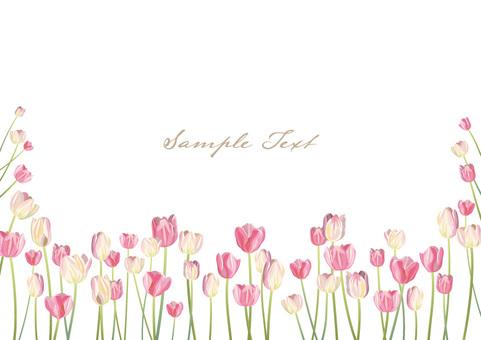 Tulip card 02
