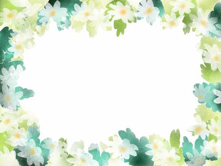 Noshi Chrysanthemum Fantasy