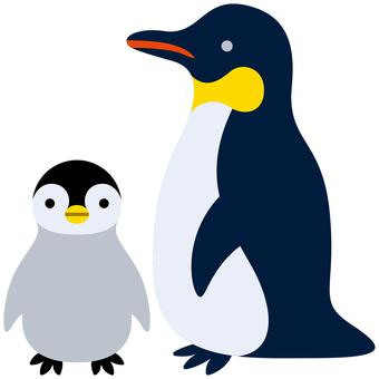 Penguin-01 (parent and child)
