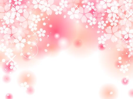 Sakura 150