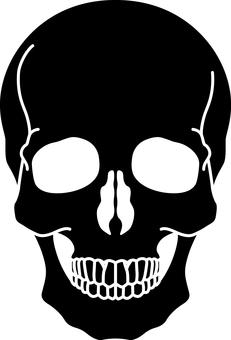 Skull _ Black