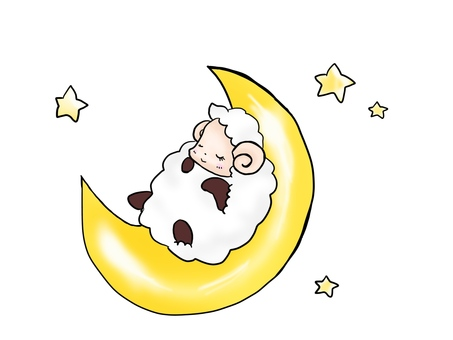 Good night sheep