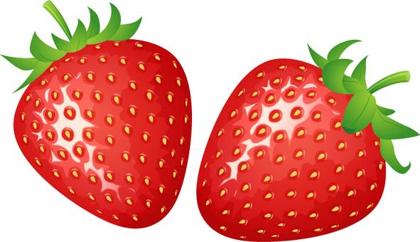 리얼한 딸기 _2 개
