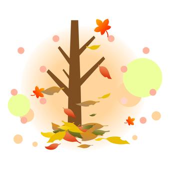 낙엽 단풍