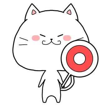 White cat ○