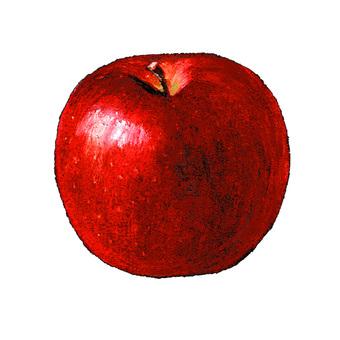 Apple chalk art
