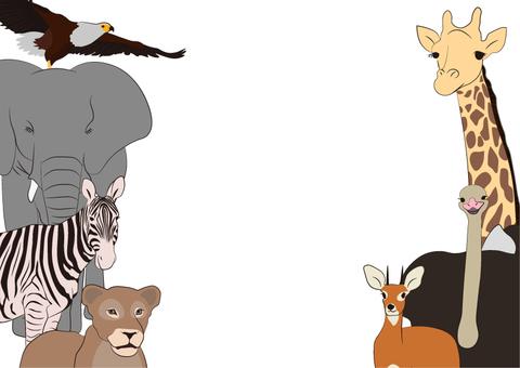 動物のフレーム2