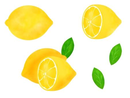 套檸檬和圓的檸檬