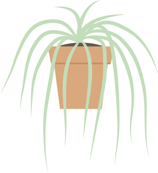 Potted plant 03