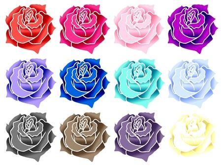 カラフルな薔薇