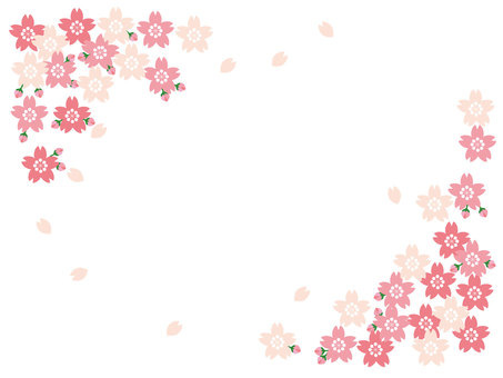 Background: Cherry blossoms, buds