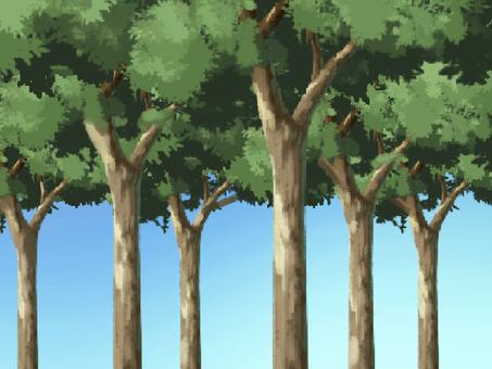 숲을 빠져 1