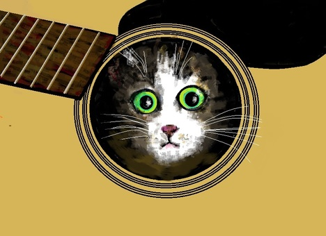 Cat in guitar