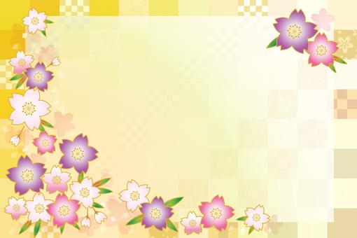 Sakura Sakura 17-05