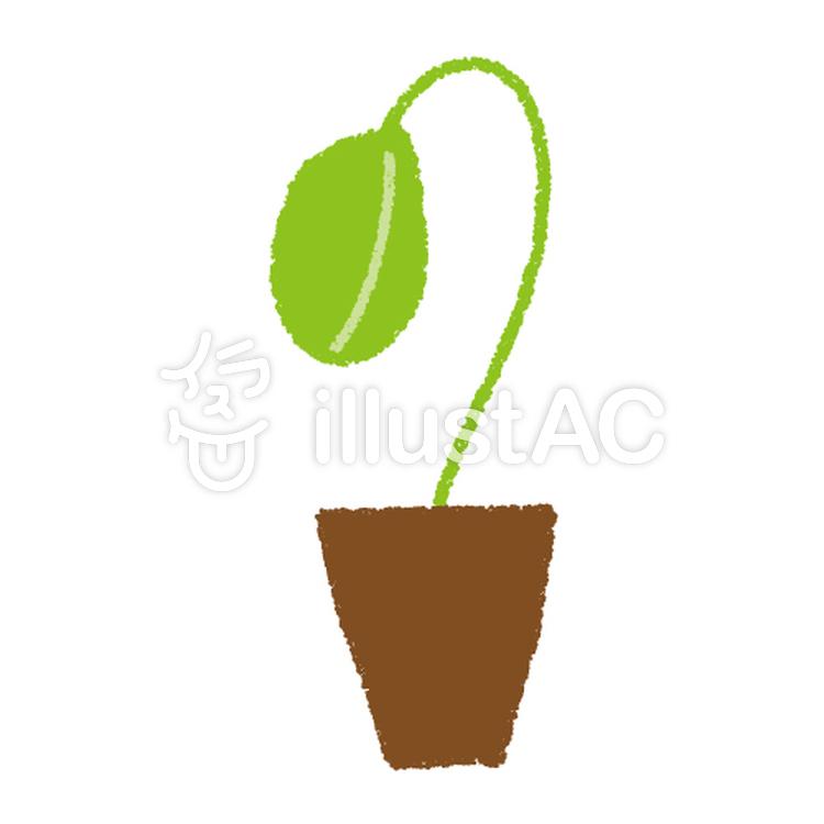 植木鉢で発芽イラスト No 145870無料イラストならイラストac