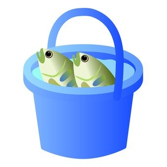 Bucket (with fish)