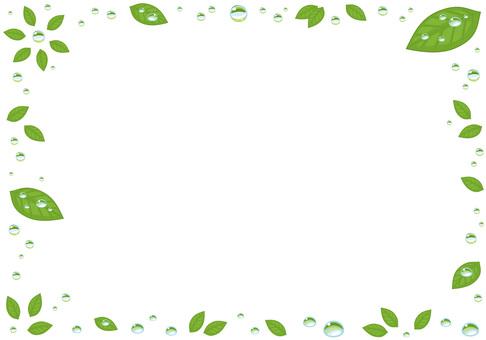나뭇잎과 물방울 프레임