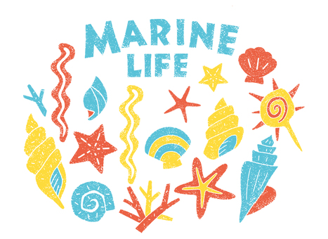 Sea life shellfish