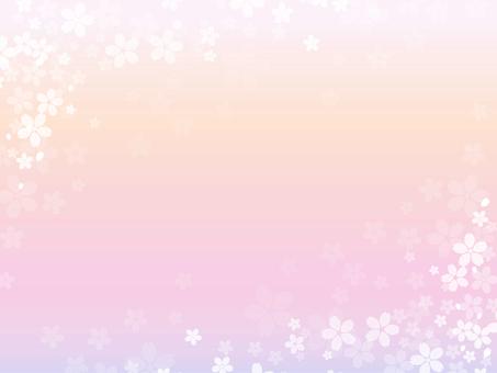 櫻花幀柔和的顏色