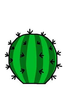 A round cactus