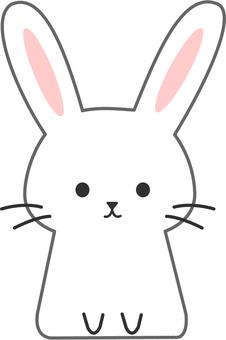 [Animals] Usagi